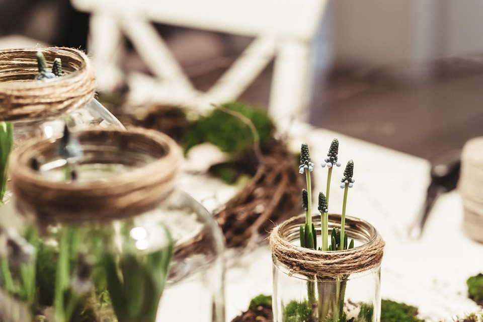 glass jars for plants